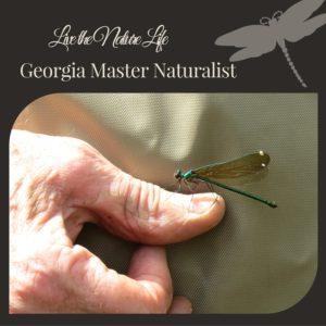 Georgia Master Naturalist