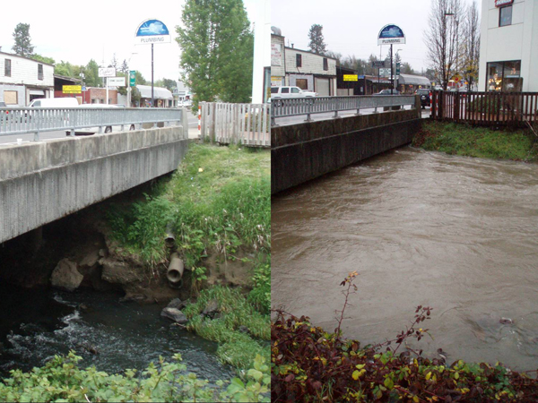 A flashy stream in Oregon's Tualatin River watershed. Flashy streams have dramatic differences in streamflow between wet and dry weather, resulting in high, steep banks as seen in the picture on the left.